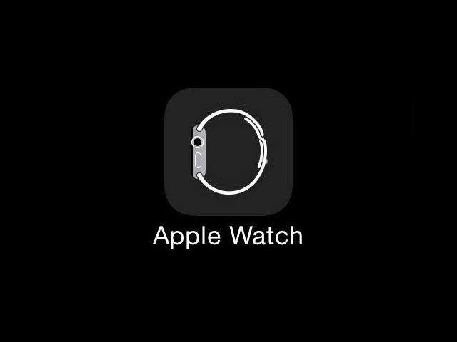 The Value Dilemma of the Apple Watch